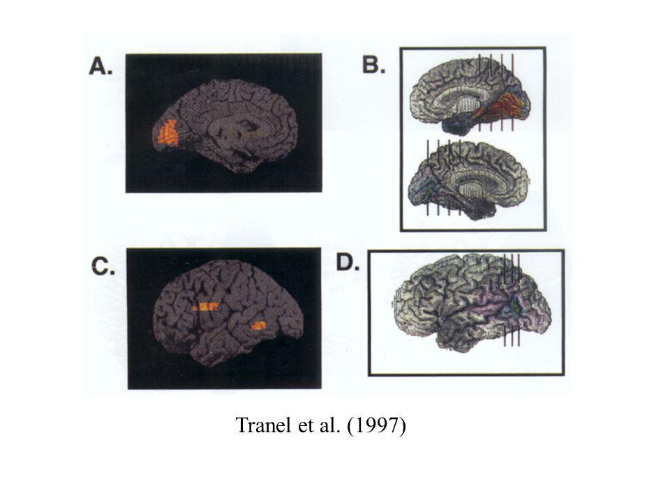 Tranel et al. (1997)