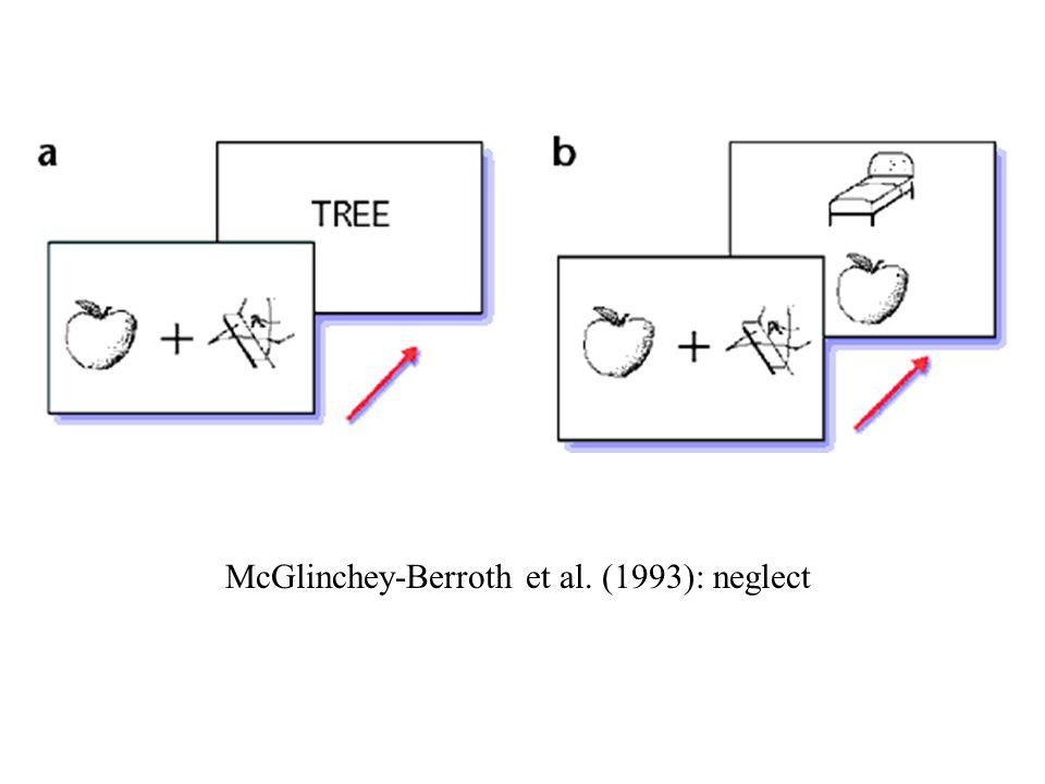 (2) Apperceptieve agnosie implicaties van deze dissociatie tussen perceptie en actie (Milner & Goodale, 1995) - herinterpretatie van dissociatie tussen ventrale en dorsale stroom (zie ook Creem & Proffitt, 2001): - Ungerleider & Mishkin (1982): wat – waar - Milner & Goodale (1995): wat – hoe - ventraal = bewuste visuele waarneming - dorsaal = visueel-gestuurde actie - ventraal = object- of omgevingsgecentreerd - dorsaal = kijker-gecentreerd