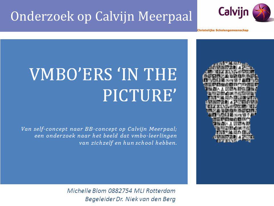 Onderzoek op Calvijn Meerpaal Michelle Blom 0882754 MLI Rotterdam Begeleider Dr. Niek van den Berg