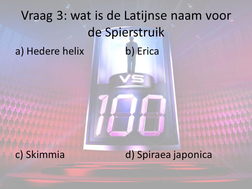 Vraag 3: wat is de Latijnse naam voor de Spierstruik a) Hedere helix c) Skimmia b) Erica d) Spiraea japonica