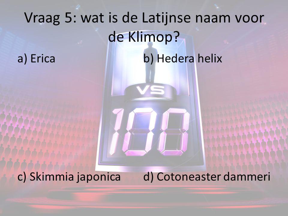 Vraag 5: wat is de Latijnse naam voor de Klimop.
