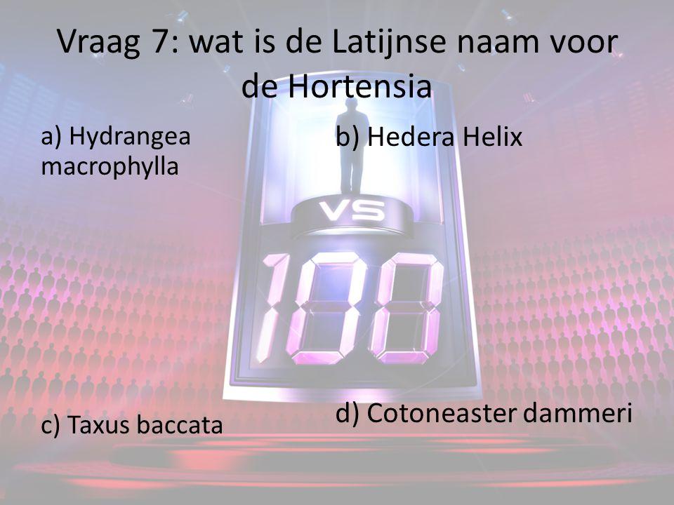 Vraag 7: wat is de Latijnse naam voor de Hortensia a) Hydrangea macrophylla c) Taxus baccata b) Hedera Helix d) Cotoneaster dammeri