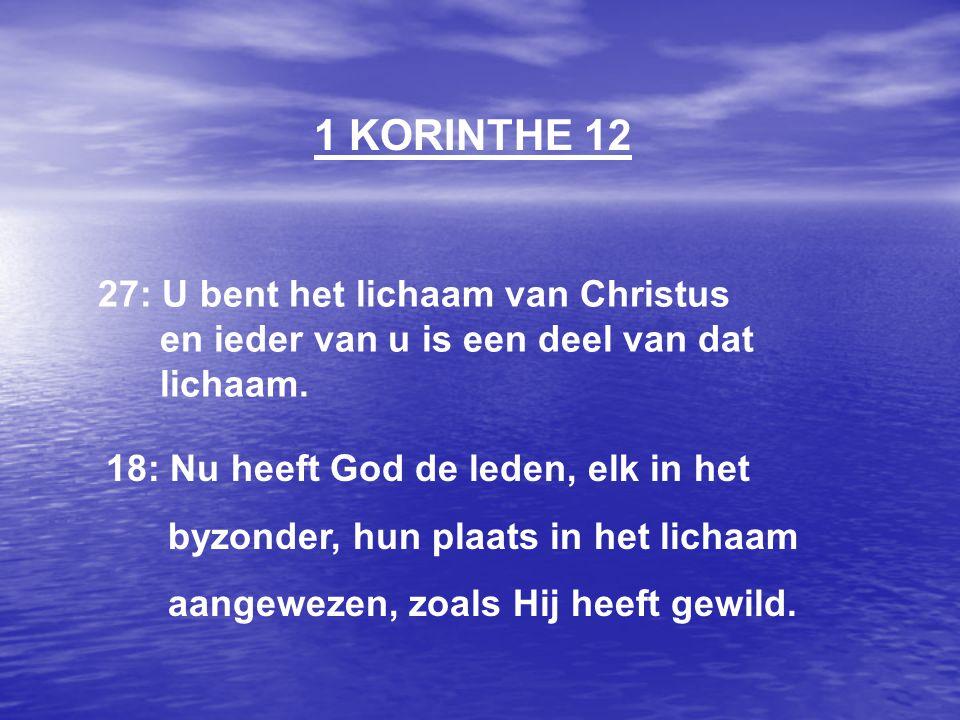 1 KORINTHE 12 27: U bent het lichaam van Christus en ieder van u is een deel van dat lichaam.
