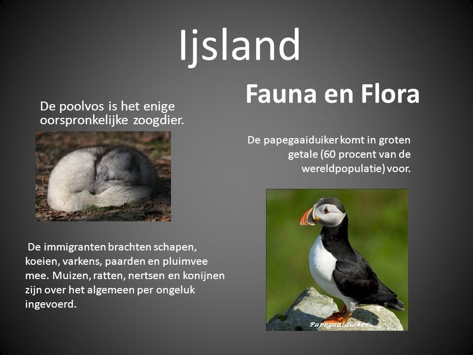 Ijsland De poolvos is het enige oorspronkelijke zoogdier.