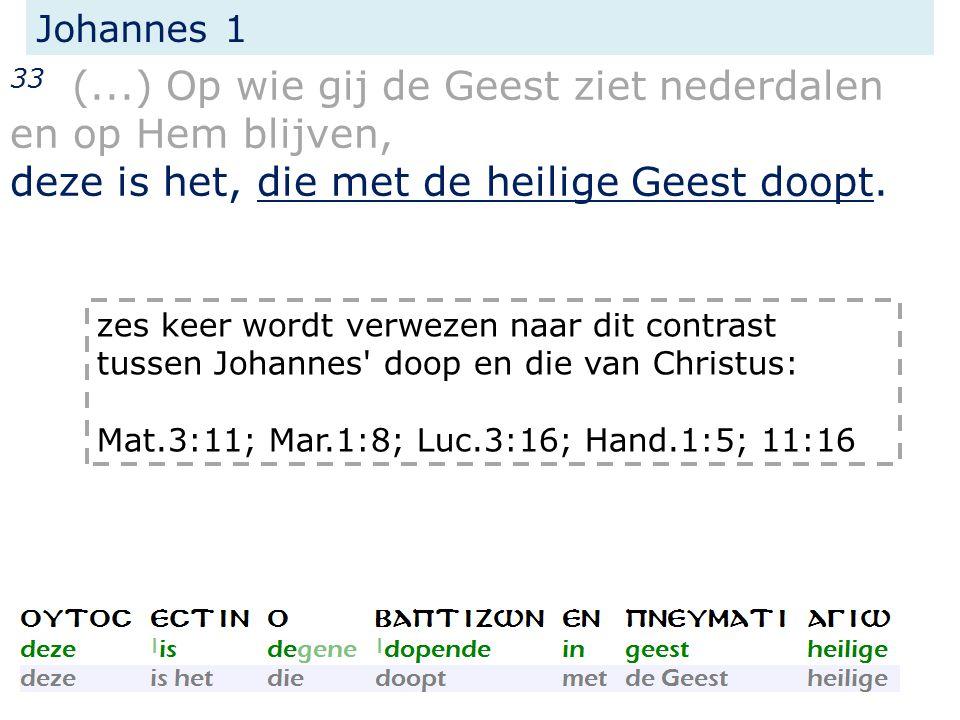 Johannes 1 33 (...) Op wie gij de Geest ziet nederdalen en op Hem blijven, deze is het, die met de heilige Geest doopt.