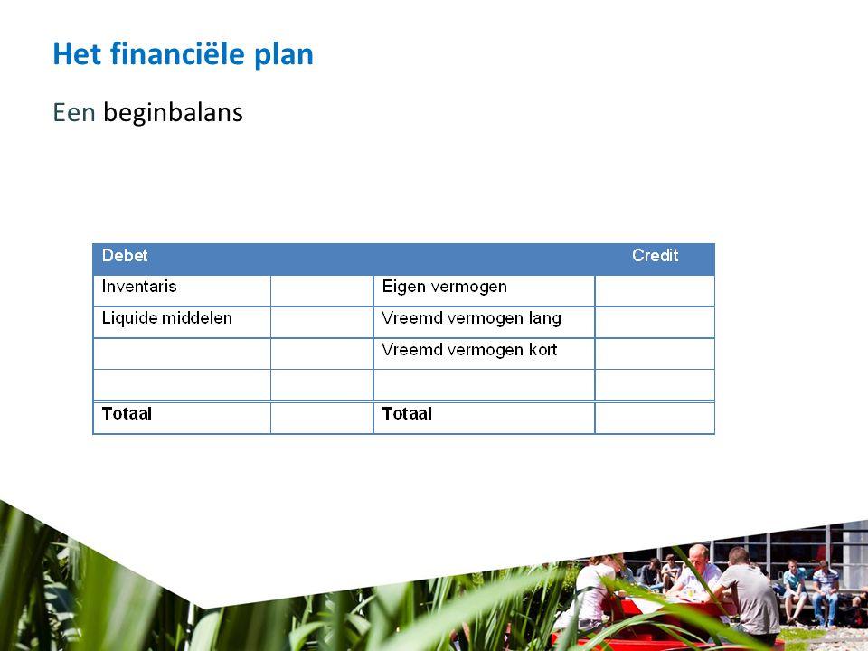 Het financiële plan Een beginbalans