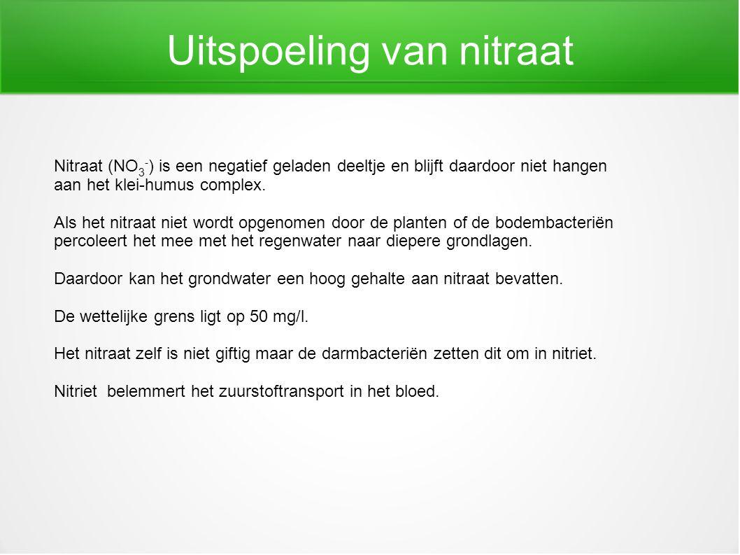 Uitspoeling van nitraat Nitraat (NO 3 - ) is een negatief geladen deeltje en blijft daardoor niet hangen aan het klei-humus complex. Als het nitraat n