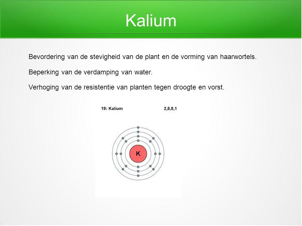 Kalium Bevordering van de stevigheid van de plant en de vorming van haarwortels. Beperking van de verdamping van water. Verhoging van de resistentie v