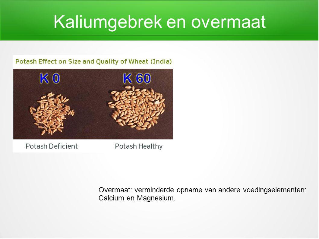 Kaliumgebrek en overmaat Overmaat: verminderde opname van andere voedingselementen: Calcium en Magnesium.