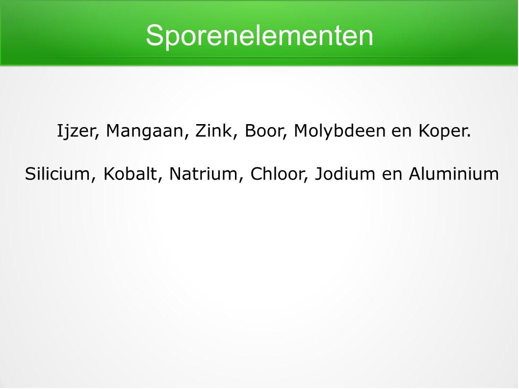 Sporenelementen Ijzer, Mangaan, Zink, Boor, Molybdeen en Koper. Silicium, Kobalt, Natrium, Chloor, Jodium en Aluminium