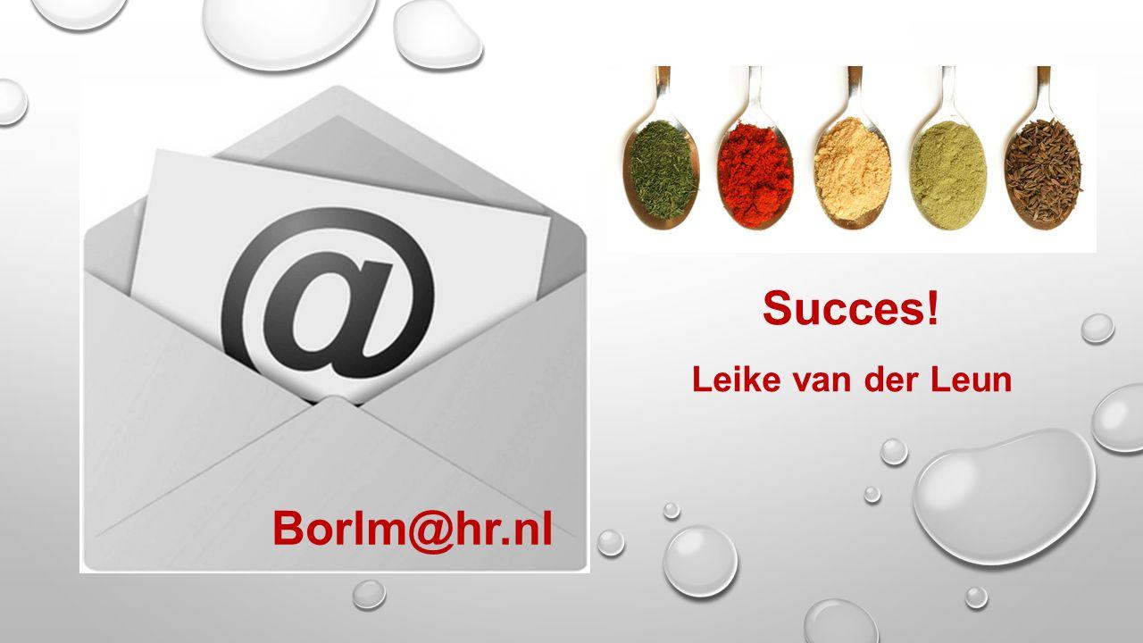 Succes! Leike van der Leun Borlm@hr.nl