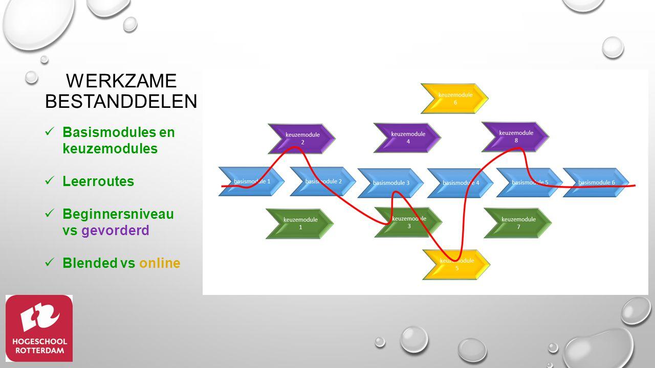 Basismodules en keuzemodules Leerroutes Beginnersniveau vs gevorderd Blended vs online WERKZAME BESTANDDELEN