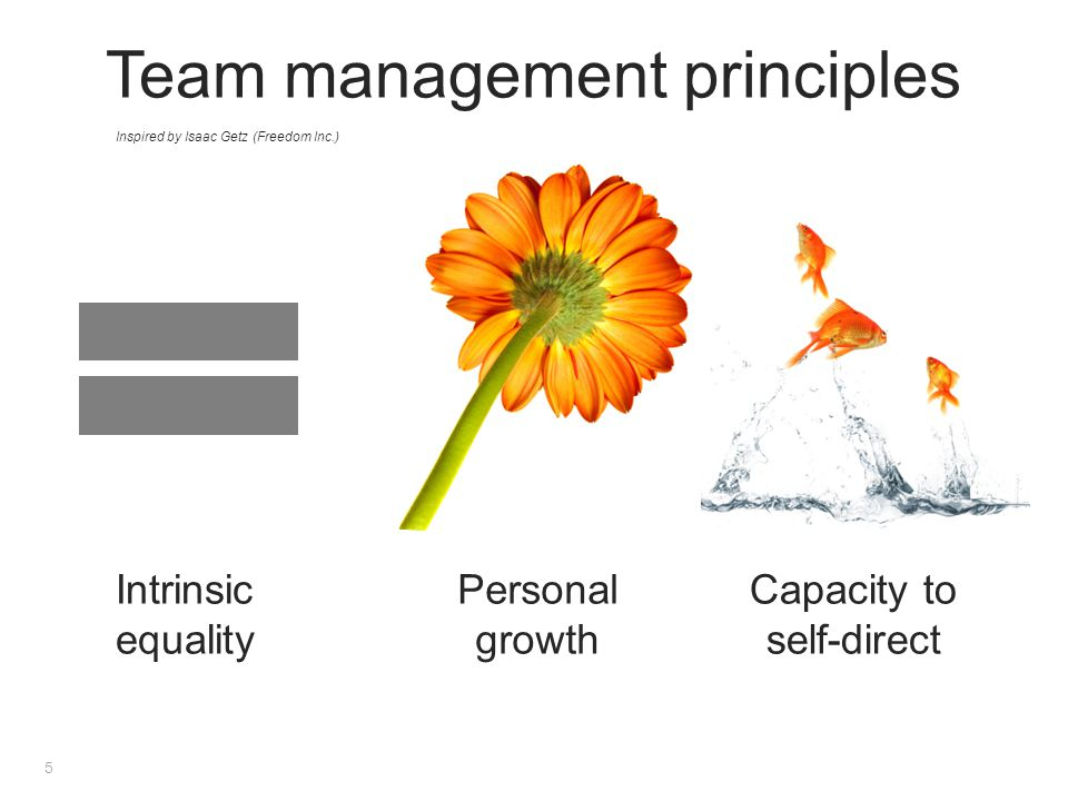 Inspired by Isaac Getz (Freedom Inc.) Intrinsic equality Personal growth Capacity to self-direct Team management principles 5