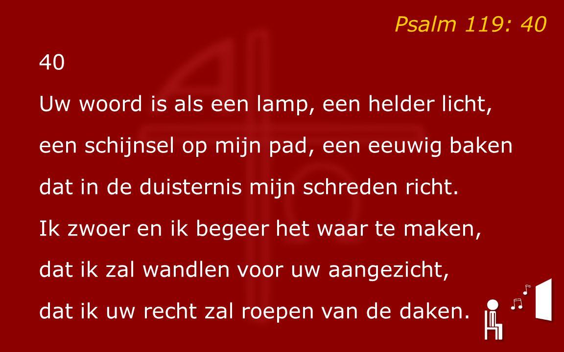 Psalm 119: 40 40 Uw woord is als een lamp, een helder licht, een schijnsel op mijn pad, een eeuwig baken dat in de duisternis mijn schreden richt.
