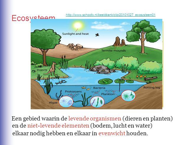 Een gebied waarin de levende organismen (dieren en planten) Ecosysteem en de niet-levende elementen (bodem, lucht en water) elkaar nodig hebben en elk