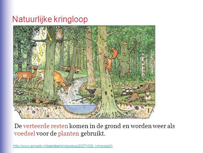 De verteerde resten komen in de grond en worden weer als voedsel voor de planten gebruikt. Natuurlijke kringloop http://www.schooltv.nl/beeldbank/clip