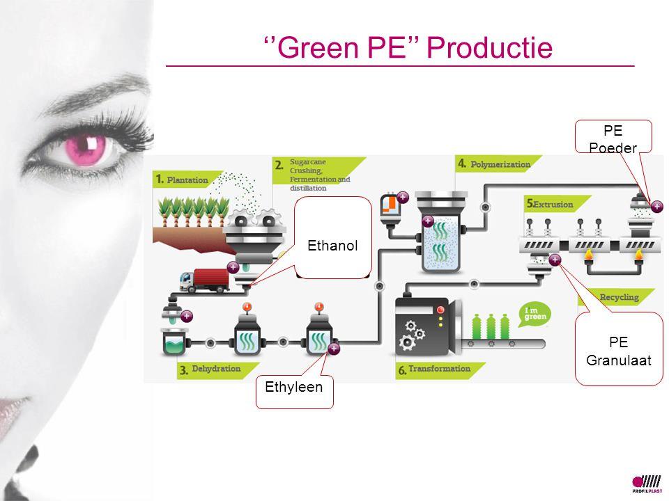 ''Green PE'' Productie Ethanol Ethyleen PE Poeder PE Granulaat
