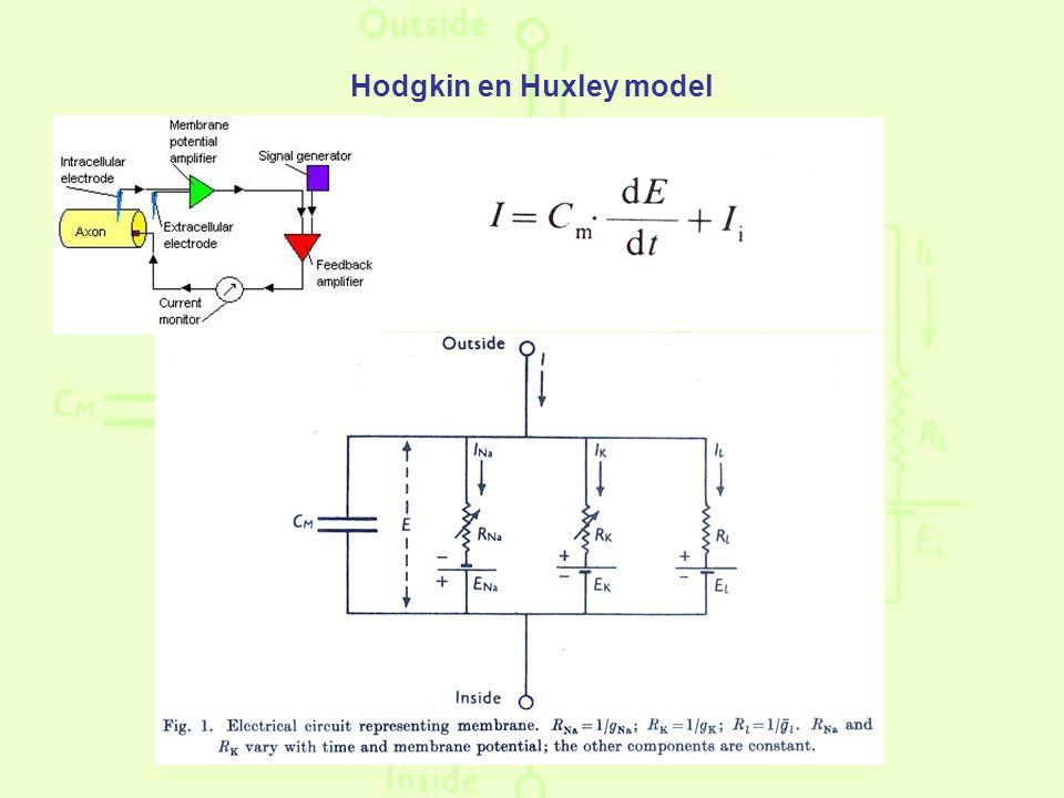 Hodgkin en Huxley model