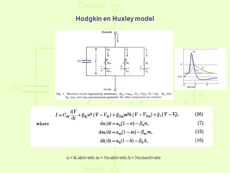 n = K aktivatie; m = Na aktivatie; h = Na inactivatie