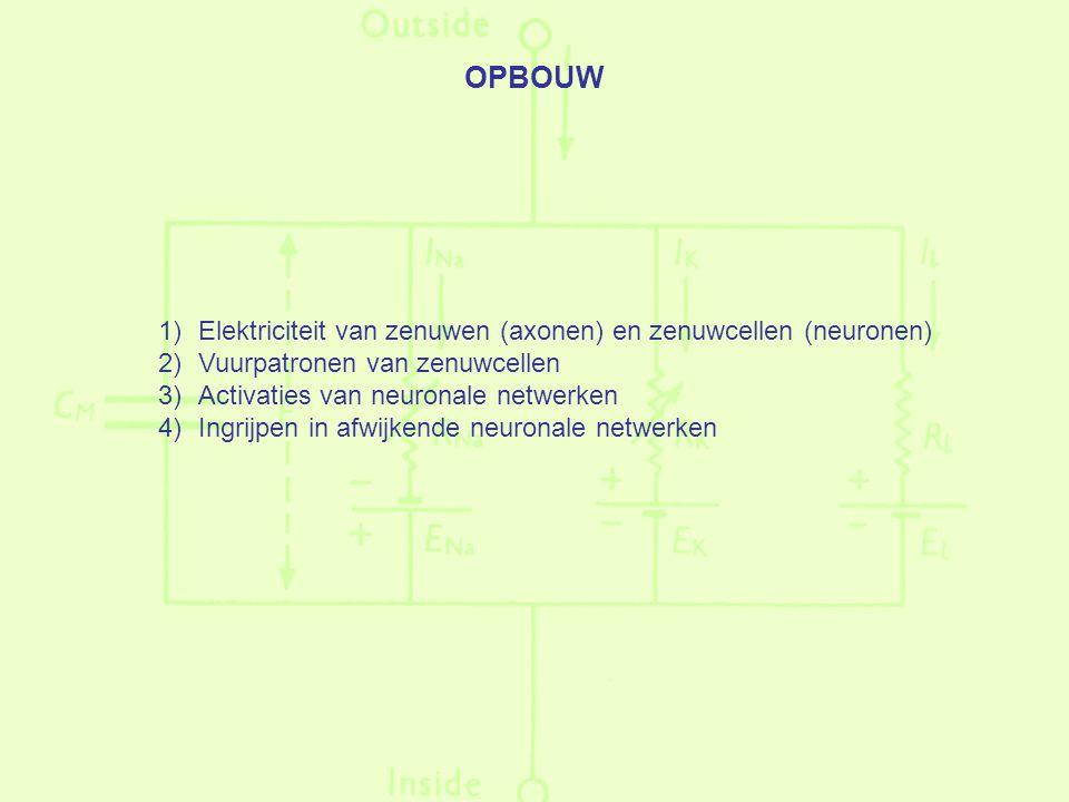 OPBOUW 1)Elektriciteit van zenuwen (axonen) en zenuwcellen (neuronen) 2)Vuurpatronen van zenuwcellen 3)Activaties van neuronale netwerken 4)Ingrijpen in afwijkende neuronale netwerken