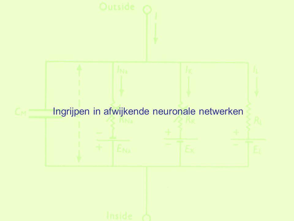 Ingrijpen in afwijkende neuronale netwerken