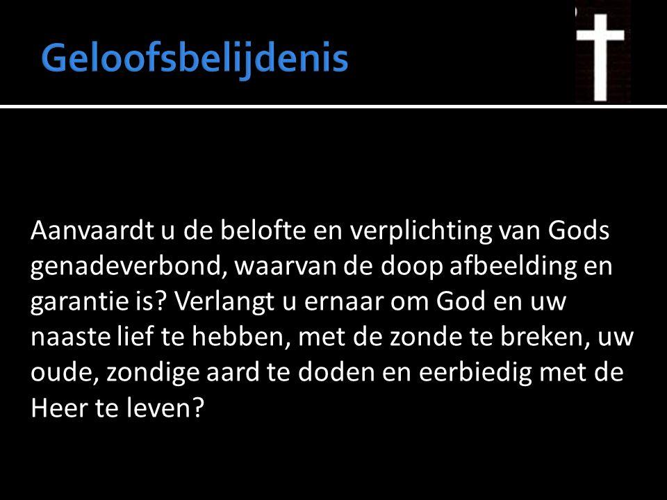Aanvaardt u de belofte en verplichting van Gods genadeverbond, waarvan de doop afbeelding en garantie is? Verlangt u ernaar om God en uw naaste lief t