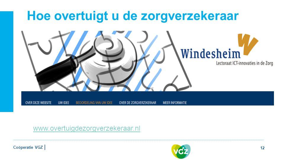 Coöperatie VGZ | Hoe overtuigt u de zorgverzekeraar 12 www.overtuigdezorgverzekeraar.nl