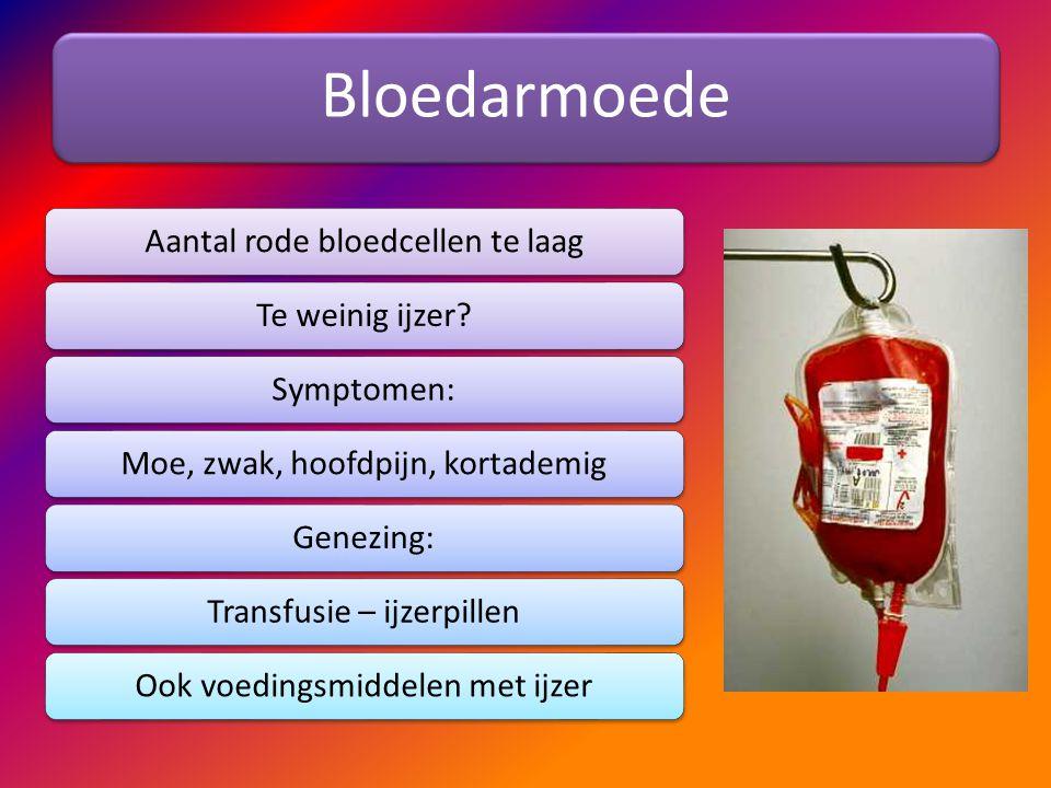 Bloedarmoede Aantal rode bloedcellen te laagTe weinig ijzer?Symptomen:Moe, zwak, hoofdpijn, kortademigGenezing:Transfusie – ijzerpillenOok voedingsmid