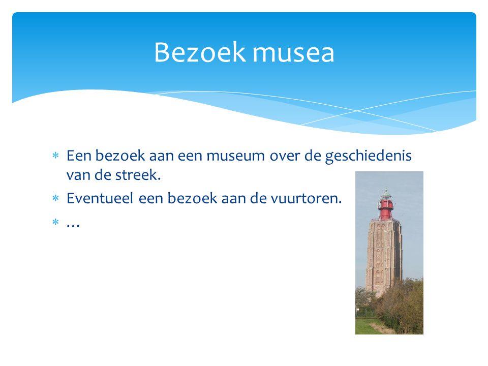  Een bezoek aan een museum over de geschiedenis van de streek.  Eventueel een bezoek aan de vuurtoren. …… Bezoek musea