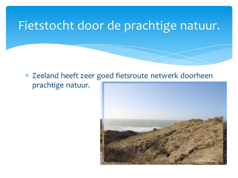  Zeeland heeft zeer goed fietsroute netwerk doorheen prachtige natuur. Fietstocht door de prachtige natuur.