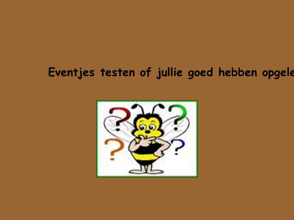 Eventjes testen of jullie goed hebben opgelet!