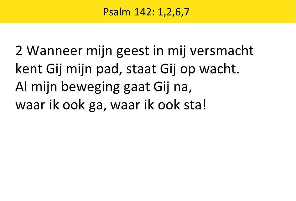 Psalm 142: 1,2,6,7 2 Wanneer mijn geest in mij versmacht kent Gij mijn pad, staat Gij op wacht.