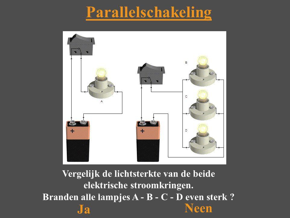 Neen Parallelschakeling Vergelijk de lichtsterkte van de beide elektrische stroomkringen.