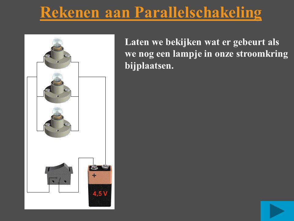 Rekenen aan Parallelschakeling Laten we bekijken wat er gebeurt als we nog een lampje in onze stroomkring bijplaatsen.