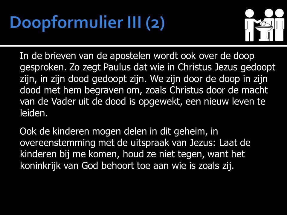 In de brieven van de apostelen wordt ook over de doop gesproken. Zo zegt Paulus dat wie in Christus Jezus gedoopt zijn, in zijn dood gedoopt zijn. We