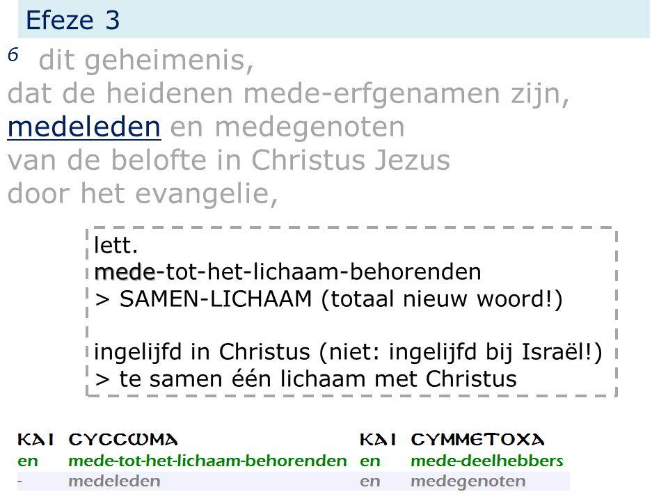 Efeze 3 6 dit geheimenis, dat de heidenen mede-erfgenamen zijn, medeleden en medegenoten van de belofte in Christus Jezus door het evangelie, mede lett.