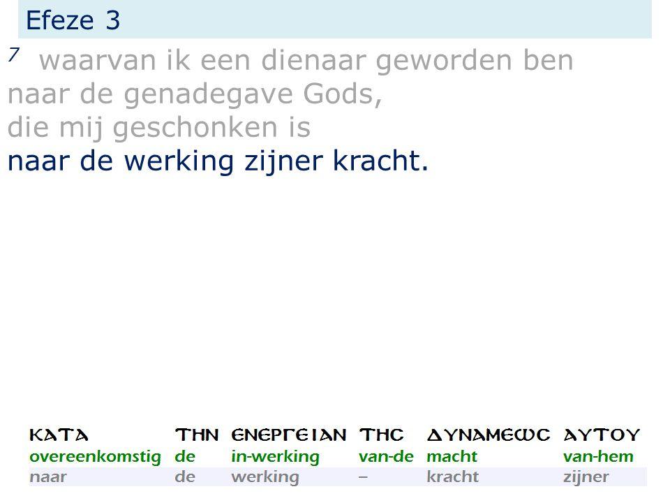 Efeze 3 7 waarvan ik een dienaar geworden ben naar de genadegave Gods, die mij geschonken is naar de werking zijner kracht.