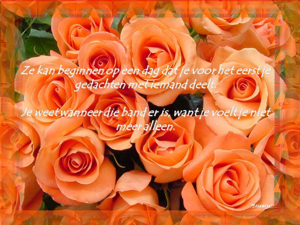 Vriendschap zegt: ik ben blij dat je er bent, ik aanvaard je zoals je bent. Vriendschap doet je dromen, maakt je gelukkig. Het geluk van de vriendscha