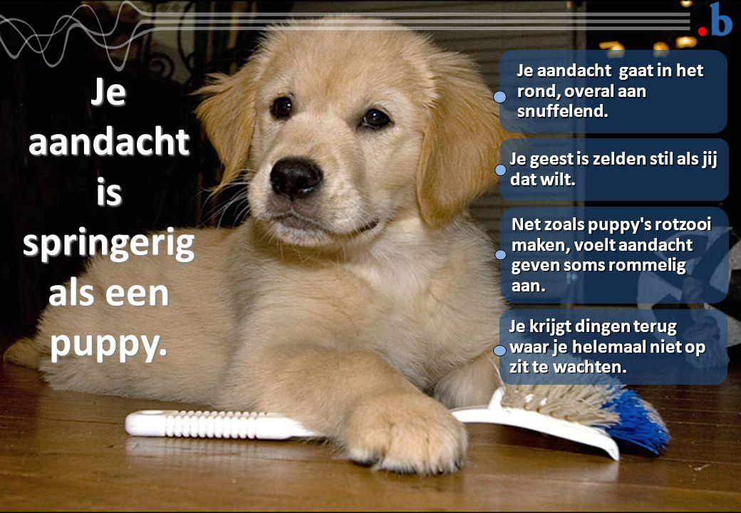 Je aandacht is springerig als een puppy. Je aandacht gaat in het rond, overal aan snuffelend.