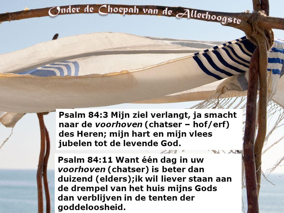 Psalm 84:3 Mijn ziel verlangt, ja smacht naar de voorhoven (chatser – hof/erf) des Heren; mijn hart en mijn vlees jubelen tot de levende God.