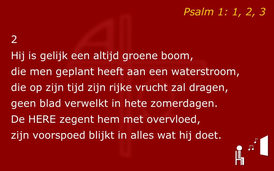 Psalm 1: 1, 2, 3 2 Hij is gelijk een altijd groene boom, die men geplant heeft aan een waterstroom, die op zijn tijd zijn rijke vrucht zal dragen, geen blad verwelkt in hete zomerdagen.