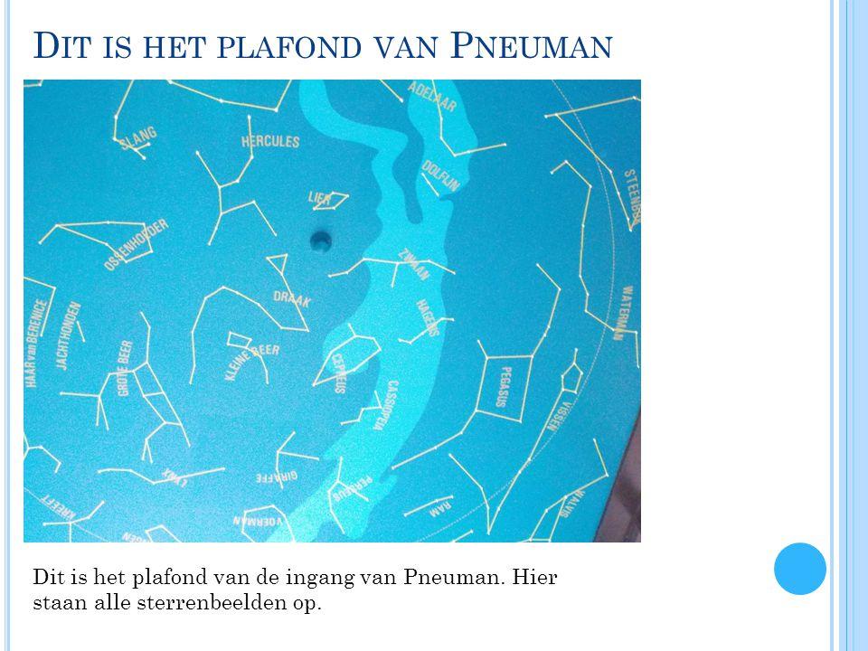 D IT IS HET PLAFOND VAN P NEUMAN Dit is het plafond van de ingang van Pneuman.