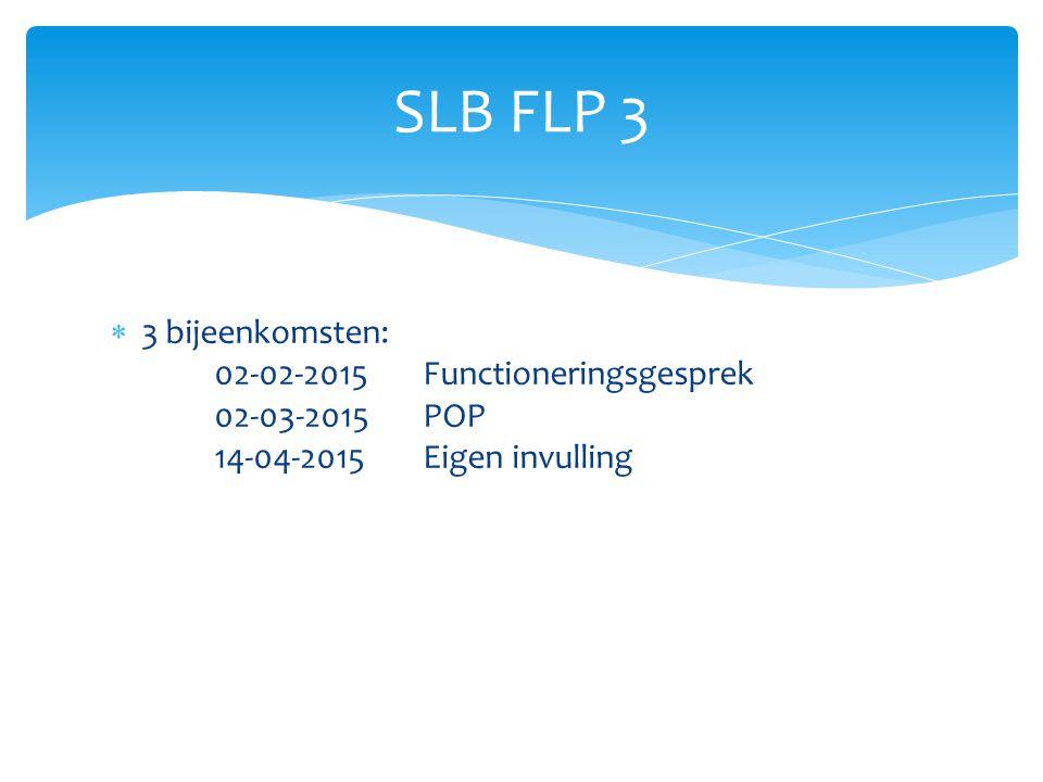  3 bijeenkomsten: 02-02-2015 Functioneringsgesprek 02-03-2015POP 14-04-2015Eigen invulling SLB FLP 3