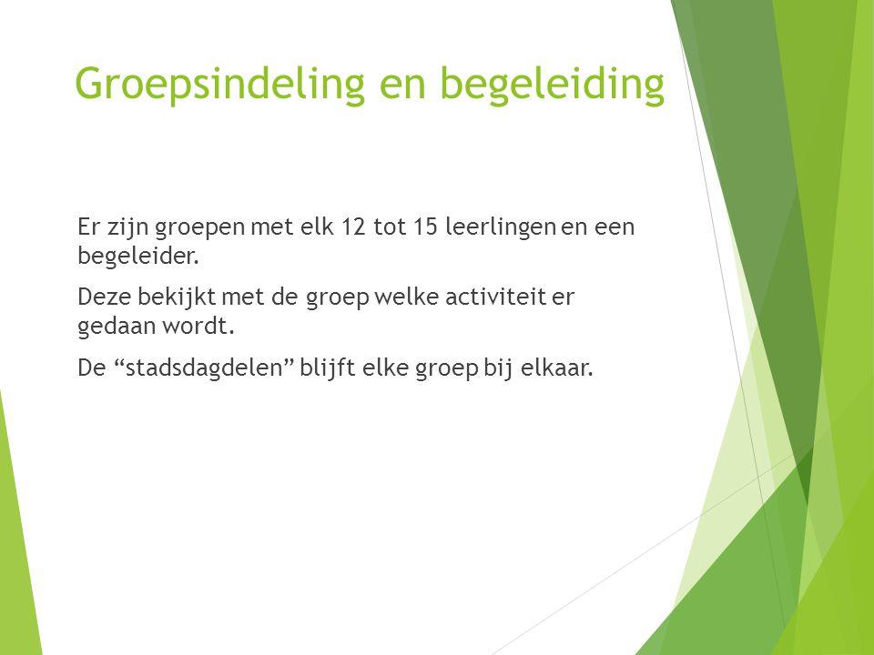 Groepsindeling en begeleiding Er zijn groepen met elk 12 tot 15 leerlingen en een begeleider.