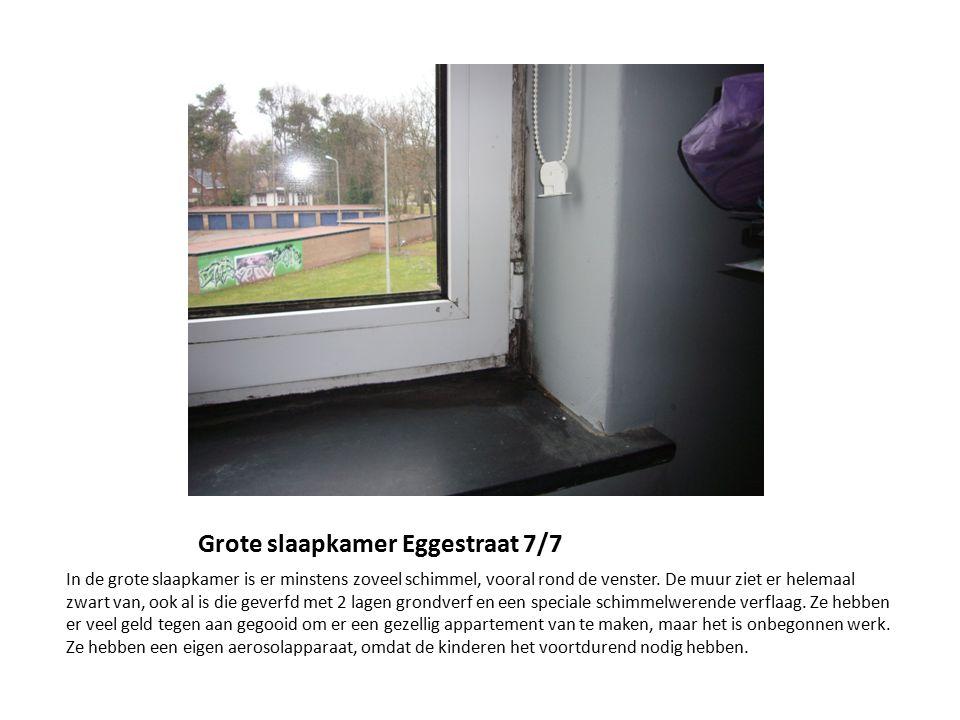 Grote slaapkamer Eggestraat 7/7 In de grote slaapkamer is er minstens zoveel schimmel, vooral rond de venster. De muur ziet er helemaal zwart van, ook