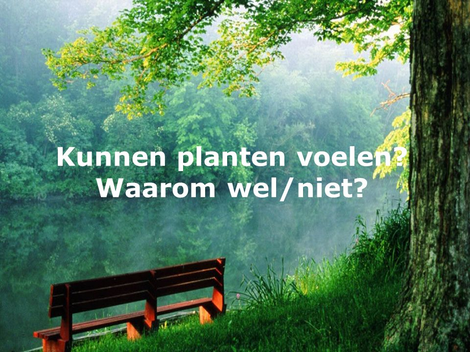Zou je in de natuur willen leven? Waarom wel/niet?