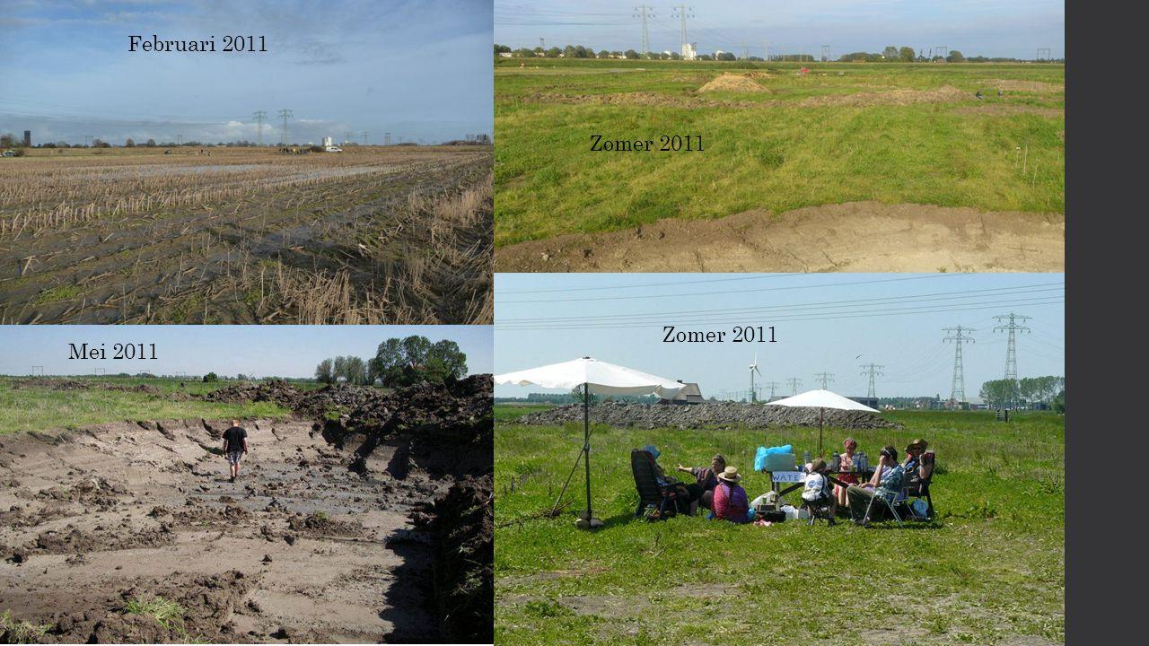 Zomer 2011 Februari 2011 Mei 2011