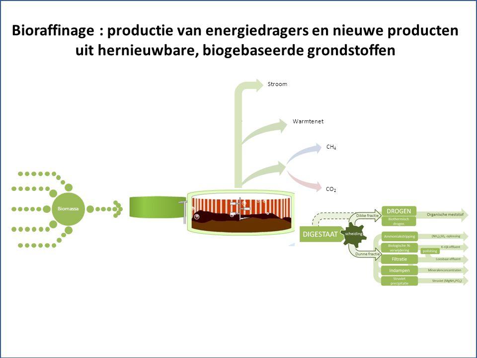 Biomassa Bioraffinage : productie van energiedragers en nieuwe producten uit hernieuwbare, biogebaseerde grondstoffen Warmtenet Stroom CH 4 CO 2