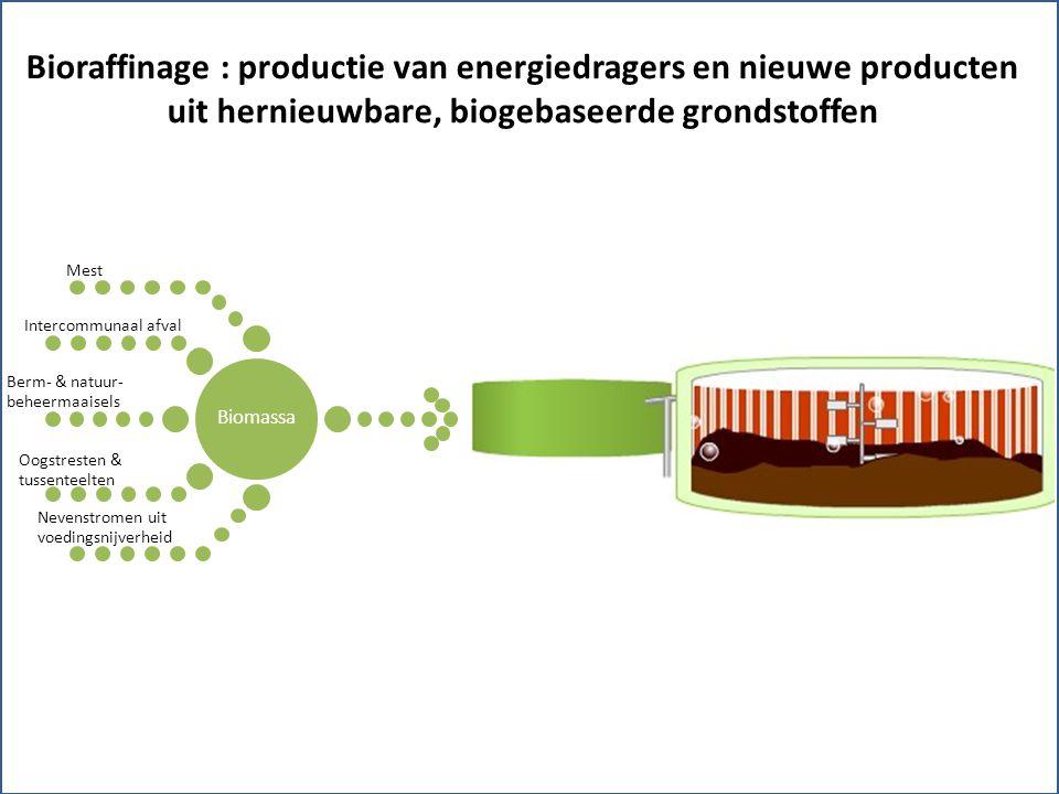 Biomassa Berm- & natuur- beheermaaisels Oogstresten & tussenteelten Intercommunaal afval Mest Nevenstromen uit voedingsnijverheid Bioraffinage : productie van energiedragers en nieuwe producten uit hernieuwbare, biogebaseerde grondstoffen