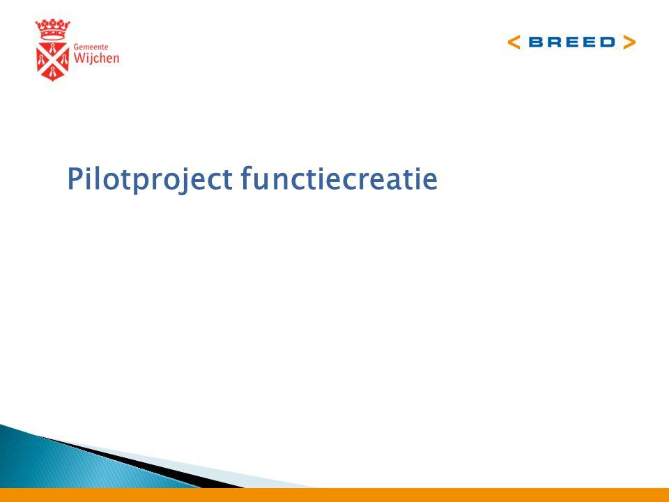 Pilotproject functiecreatie